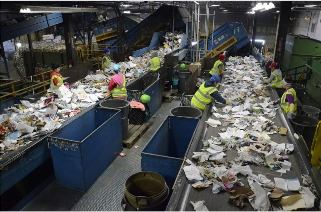 waste wise comingle waste services